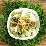 Salatmischung der Saison